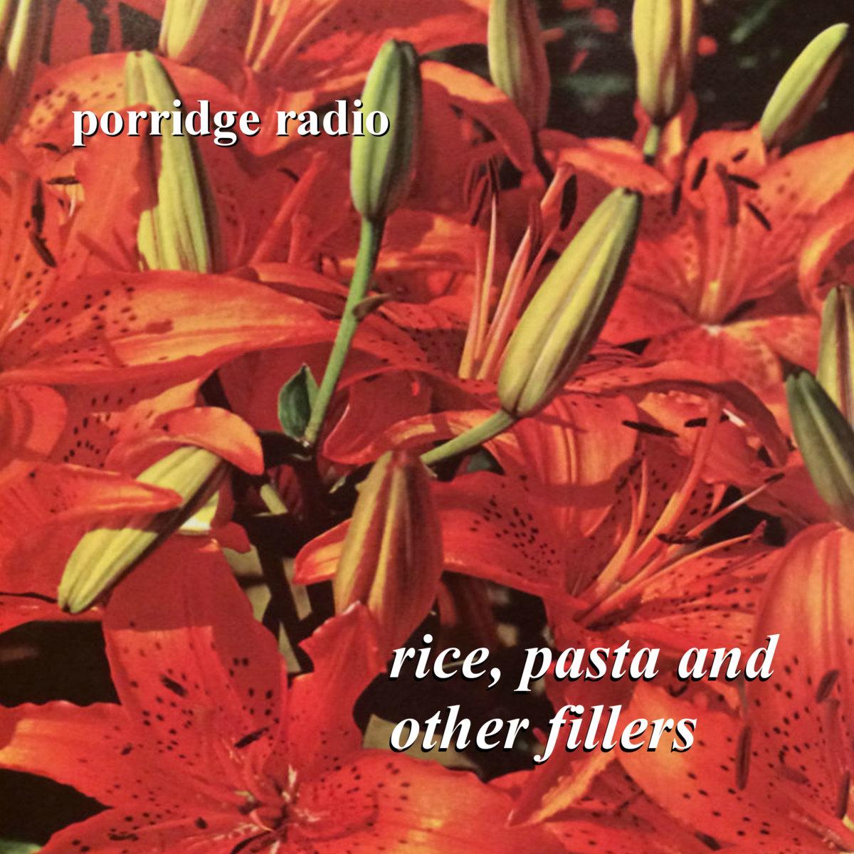 Porridge Radio rice pasta other fillers artwork