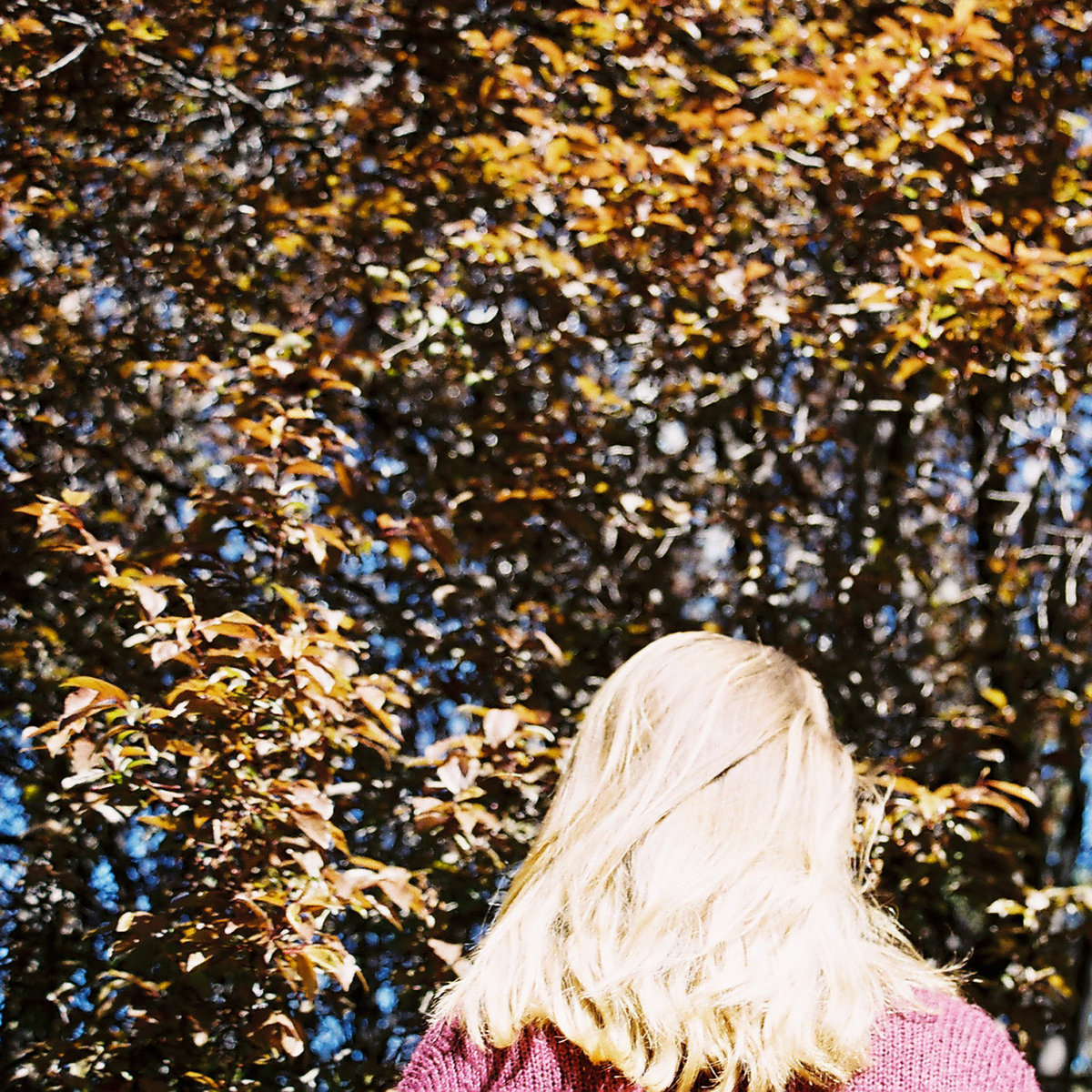 Saint Clementine album art photo of girl and trees