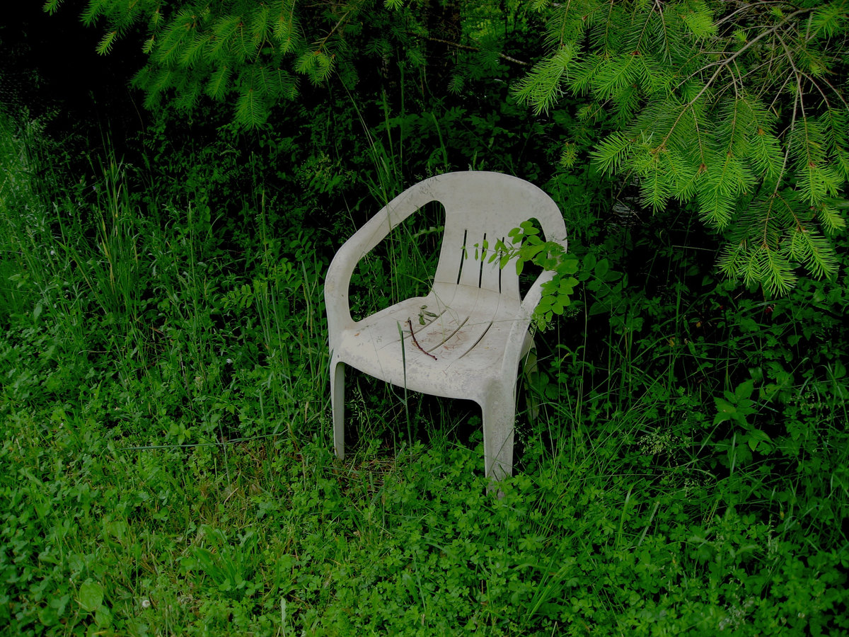 distant reader home power album art overgrown chair