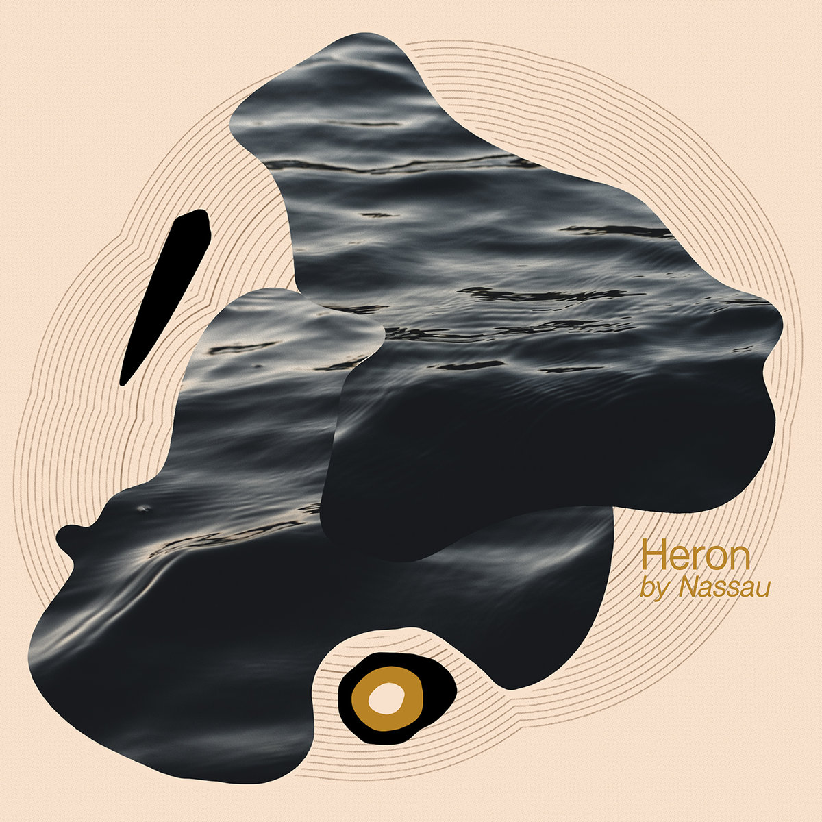 nassau heron album art