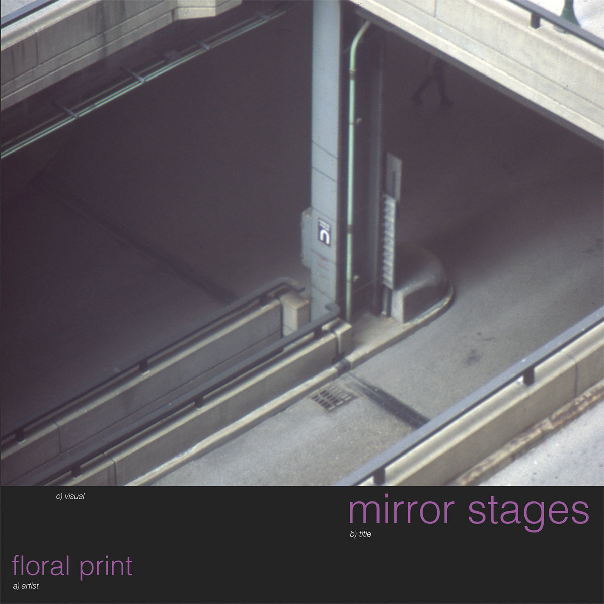 floral print mirror stages album art